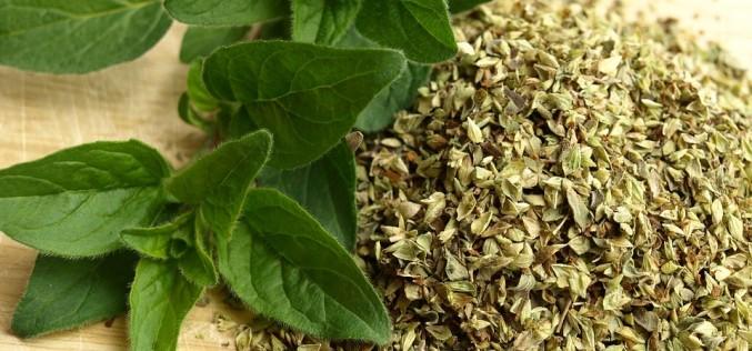 Erbe aromatiche e preparati per risotti: dal 23 luglio cambia il regime Iva