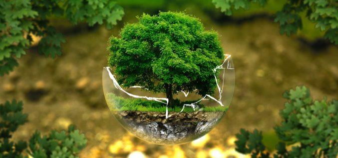 Albo gestori ambientali: entro il 30 Aprile pagamento del Diritto Annuale