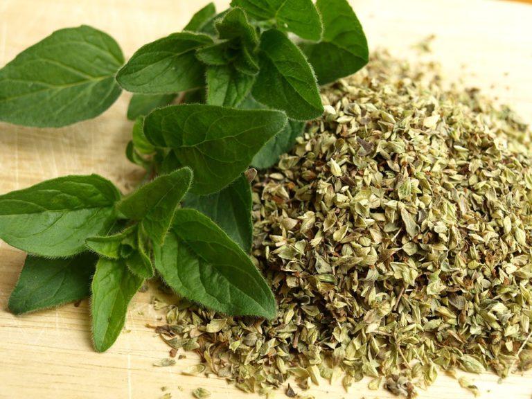 erbe aromatiche-preparativi per risotti-cambiamento regime iva