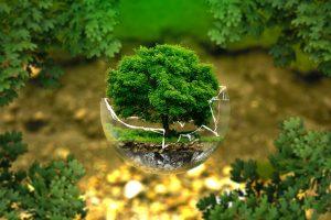 Gestione rifiuti speciali – importanti modifiche